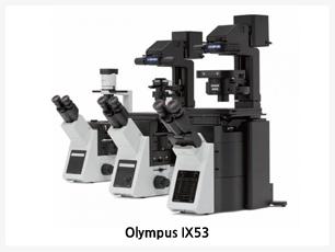대용량의 세포관찰에 적합,고해상도의 형광 및 세포배양 관찰에 적합,뛰어난 위상차 이미지 제공,인체공학적 디자인,OLYMPUS IX53은 세포배양 관찰에 편리하도록 디자인이 개선 되었습니다.다양한 응용기술에 활용 할 수 있도록 확장성 또한 개선 되었습니다.가격대비 최고의 광학기술 적용된 연구용 현미경으로 다양한 장치들과 결합하여 조직배양부터 살아있는 세포까지도 관찰 할 수 있습니다.